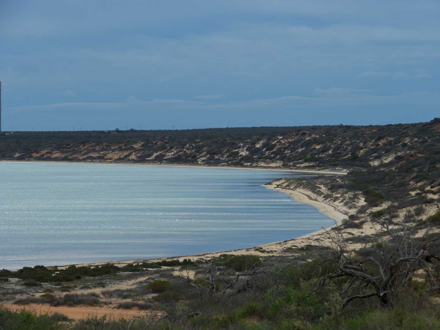 Denham Australia  City pictures : Denham Seaside Tourist Village, Western Australia | An adventure ...