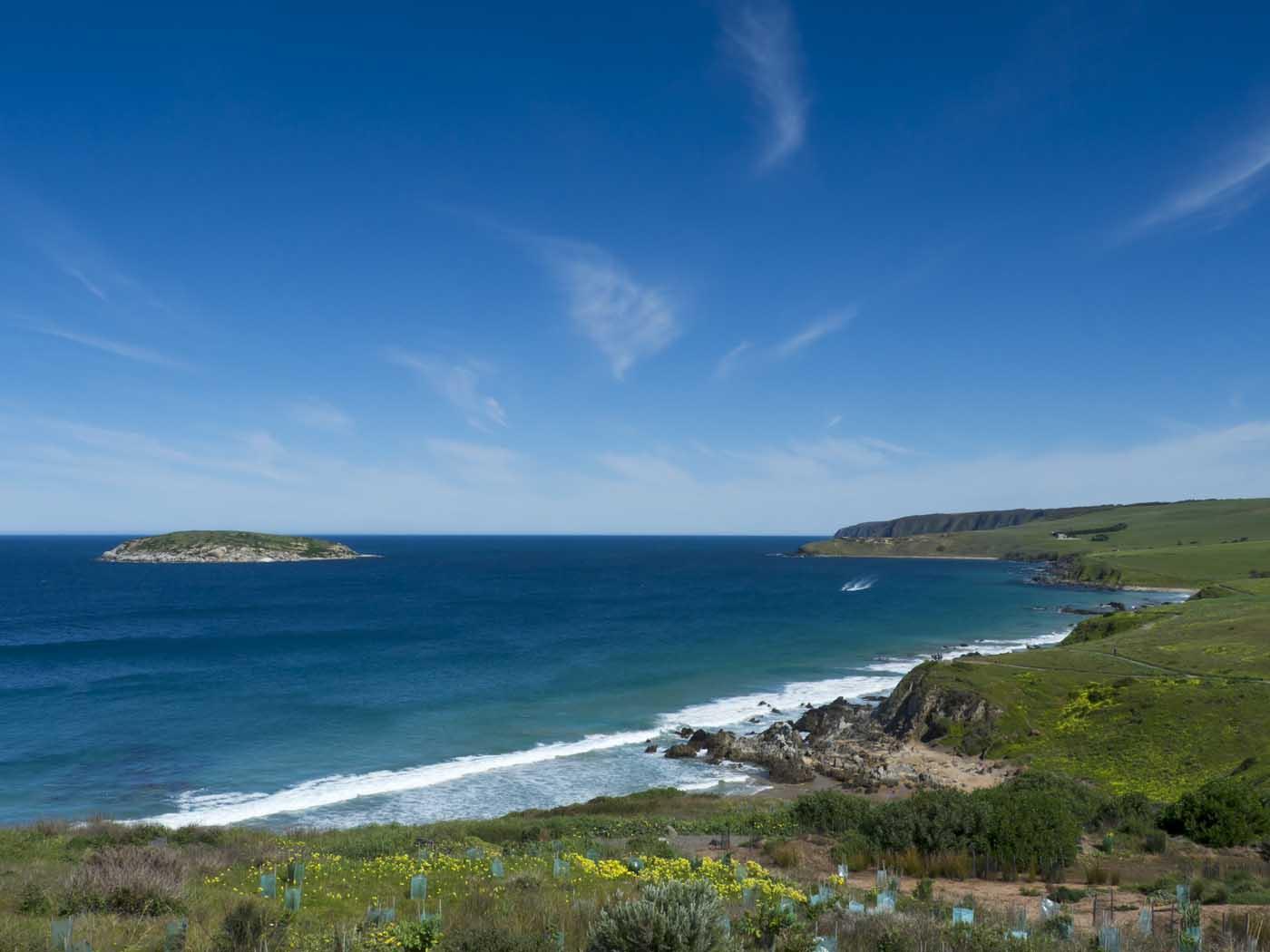 Victor Harbor Beachfront Holiday Park South Australia